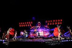「氣志團万博2014」の氣志團のステージの様子。(撮影:釘野孝宏)