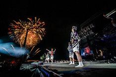 「氣志團万博2014」最終日のエンディングで花火を見上げる氣志團。(撮影:青木カズロー)