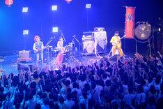 N'夙川BOYS(撮影:後藤壮太郎)