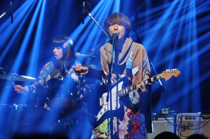 「LIVE MONSTER」でのスタジオライブの様子。(c)日本テレビ