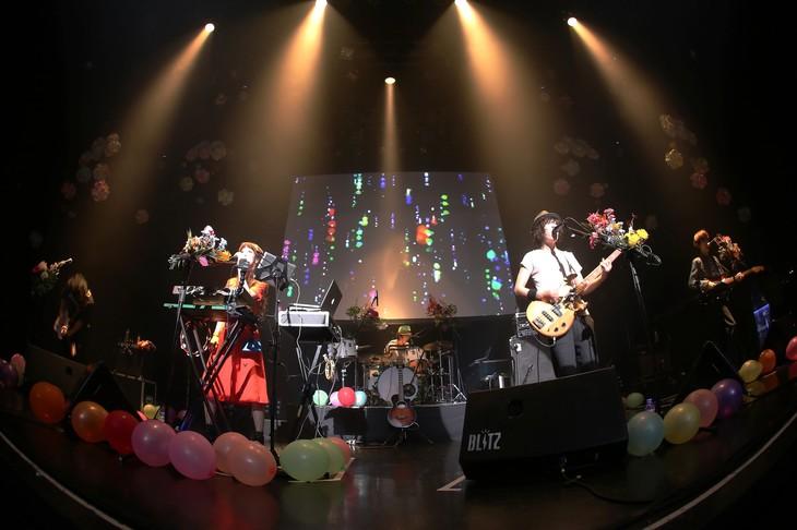 Czecho No Republic「MANTLE TOUR ~2014年宇宙の旅~」東京・赤坂BLITZ公演の様子。