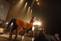 桜井秀俊(I.M.O.)(photo by KISEKI)