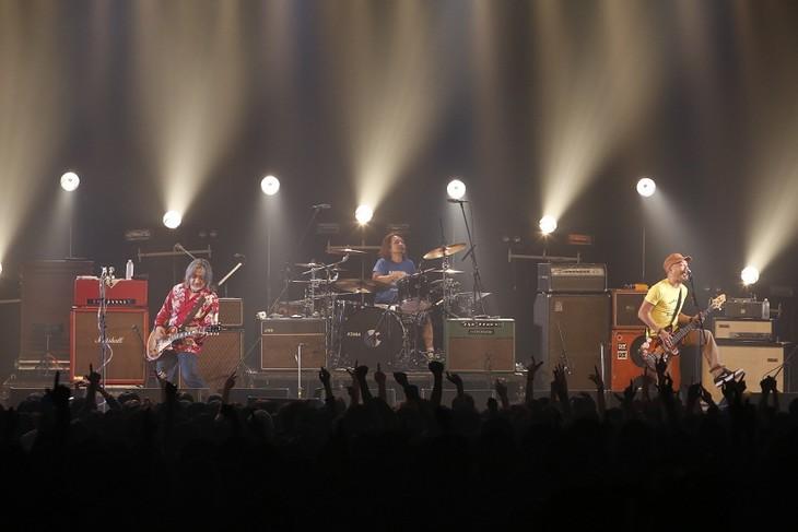 SPARKS GO GO(photo by KISEKI)