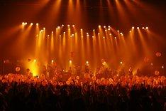 「TOYOSU JUNCTION 2014」アンコールの様子(photo by KISEKI)。