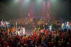 「アップアップガールズ(仮)ライブハウスツアー2014 ハイスパートキングダム」の様子。