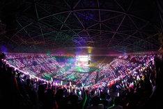 乃木坂46「Merry X'mas Show 2014」の様子。
