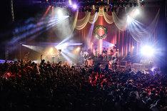 """「BIGMAMA presents X'mas Special Live 2014 """"Royalized X'mas""""」の様子。(Photo by Azusa Takada)"""
