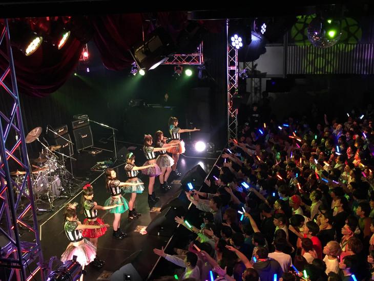 paletワンマンライブ「palet LIVE 2014年末SP!!」の様子。