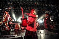 髭「『素敵な闇』TOUR」東京・LIQUIDROOM公演の様子。(撮影:梅田航)