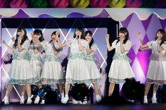 昨日2月22日に埼玉・西武ドームで開催された「乃木坂46 3rd YEAR BIRTHDAY LIVE」の様子。