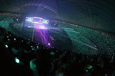 SHINeeのグループカラーであるパールアクアグリーンの光で埋め尽くされた東京ドーム。