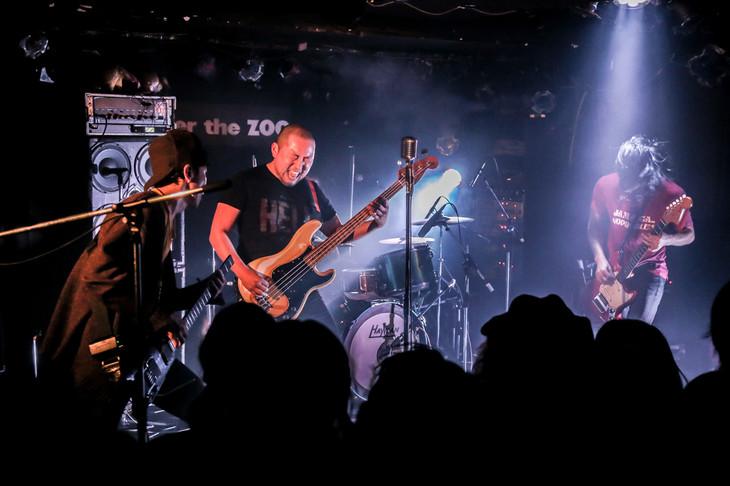 MO'SOME TONEBENDER「Zher the ZOO YOYOGI 10th Anniversary~Live Goes On !~」東京・Zher the ZOO YOYOGI公演の模様。(撮影:横山マサト)
