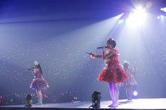 ももいろクローバーZ「ももクロどんたく 2015 春 ~劇空間プロライブ~」の様子。(Photo by HAJIME KAMIIISAKA)