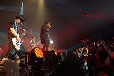 "SPYAIR「SPYAIR LIVE 2015 ""ROCKIN' OUT""」愛知・Zepp Nagoya公演の様子。(撮影:新澤和久)"