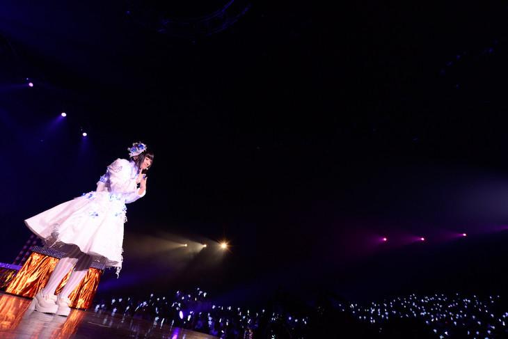 「悠木碧 Concert 2015 プルミエ!」の様子。