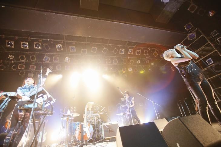 ハルカトミユキ (photo by Aki Ishii)
