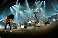 THE BACK HORN「『KYO-MEI SPECIAL LIVE』~人間楽団大幻想会~」の様子。(Photo by RUI HASHIMOTO[SOUND SHOOTER])