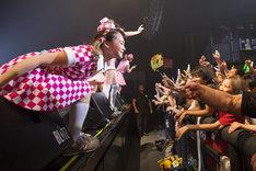 「PASSPO☆ ワンマンフライトツアー2015 ~More Attention~」東京・赤坂BLITZ公演の様子。(撮影:塚原孝顕)