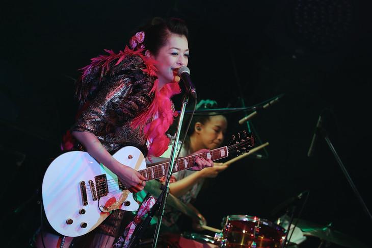 GO-BANG'S「FAIRY BRAIN NIGHT~『フェアリーブレイン&妖精頭脳』発売記念ライブ~」東京・WWW公演の様子。(写真提供:SENHA&Co.)