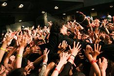 ドレスコーズのライブの様子。(Photo by SUNAO HONDA)