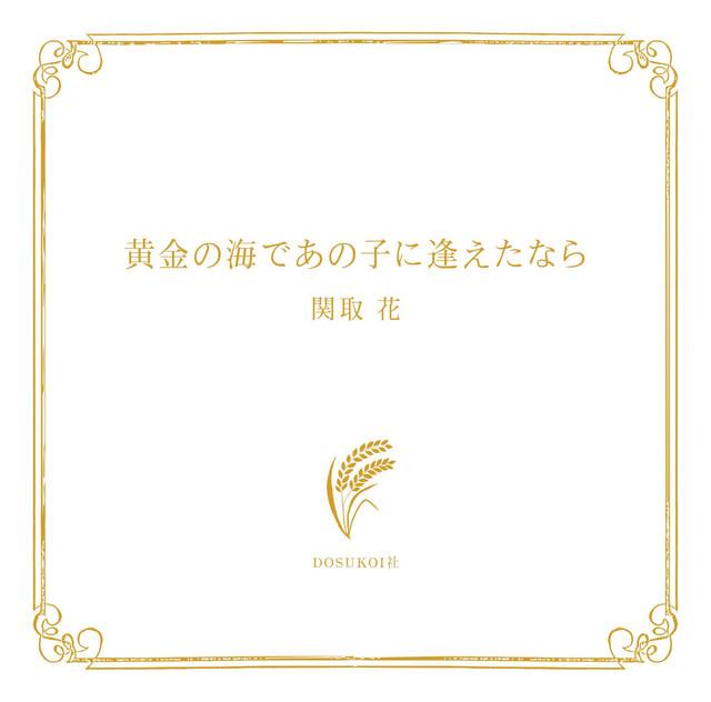 関取花「黄金の海であの子に逢えたなら」ジャケット
