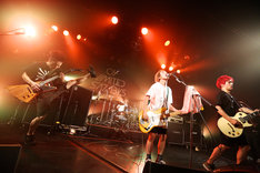 04 Limited Sazabys「CAVU tour 2015 ~Final Series~」東京・LIQUIDROOM公演の様子。(Photo by Viola Kam[V'z Twinkle])