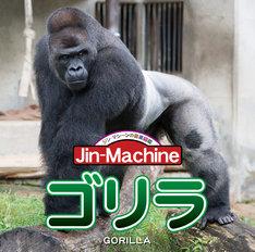 Jin-Machine「ゴリラ」ヒガシローランドゴリラ盤ジャケット
