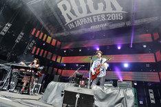 ゲスの極み乙女。(写真提供:rockin'on japan)
