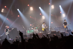 「BUMP OF CHICKEN Special Live 2015」横浜アリーナ公演の様子。(撮影:古渓一道)