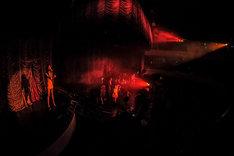 女王蜂「失神ナイト~蜂月蜂日~」東京キネマ倶楽部公演の様子。(撮影:タンベミサキ[Ohagi])