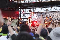 SCOOBIE DOのライブの様子。(撮影:渡邉一生)