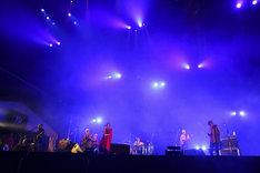 フィッシュマンズのライブの様子。(撮影:渡邉一生)