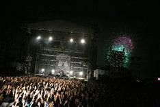 キュウソネコカミのライブの様子。(Photo by Viola Kam [V'z Twinkle Photography])