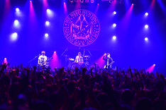 THE PREDATORSの東京・Zepp Tokyo公演の様子。(撮影:橋本塁 / SOUND SHOOTER)