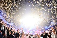「ゲスチック乙女 ~アリーナ編~」神奈川・横浜アリーナ公演の様子。(撮影:橋本塁 / SOUND SHOOTER)