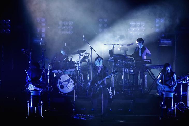 "「SAKANAQUARIUM2015-2016 ""NF Records launch tour""」東京・日本武道館公演の模様。(撮影:山本マオ)"