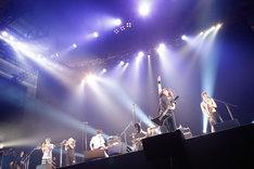 HEY-SMITH(Photo by Tsukasa Miyoshi[Showcase])