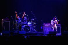 ACIDMAN(Photo by Tsukasa Miyoshi[Showcase])