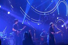 back number (c)テレビ朝日ドリームフェスティバル2015