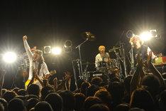 MINAMI NiNE(Photo by Yuji Honda)