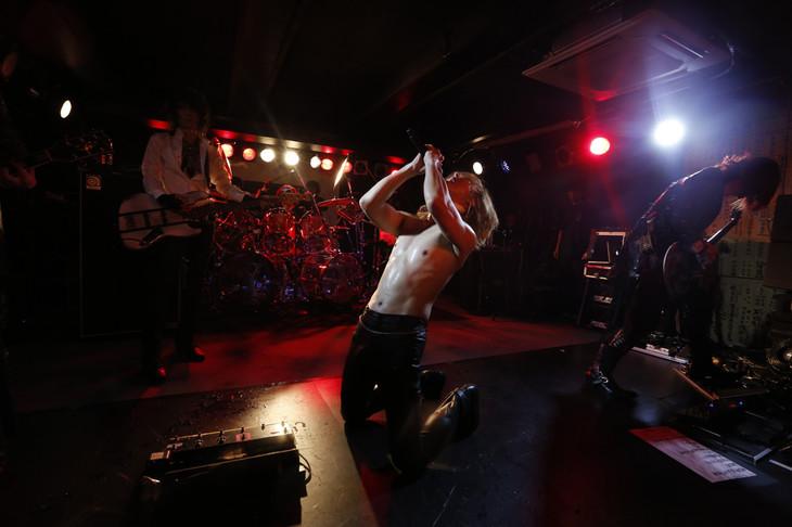 X JAPANのライブの様子。(写真提供:Japan Music Agency)
