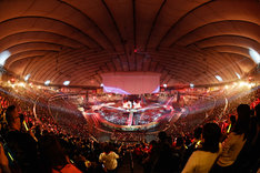 「史上最強の移動遊園地 DREAMS COME TRUE WONDERLAND 2015」東京ドーム公演の様子。