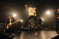 「POTSHOT 20th Anniversary Tour Final」東京・LIQUIDROOM公演の様子。(Photo by So Kuramochi)