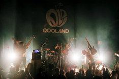 QOOLANDのライブの様子。(撮影:横山マサト)