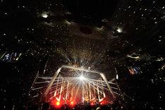 「Acid Black Cherry 2015 arena tour L-エル-」日本武道館公演の様子。