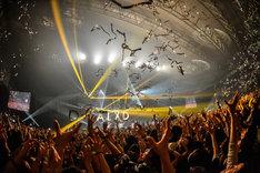 "「[Alexandros] TOUR 2015""ご馳走にありつかせて頂きます""」幕張メッセ国際展示場公演の様子。(Photo by Azusa Takada)"