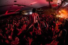 HEY-SMITHのライブの様子。(Photo by HayachiN)
