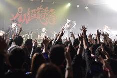 SUPER BEAVERのライブの様子。(Photo by OOMO)