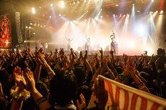 THE BAWDIESのライブの様子。(Photo by JON...)