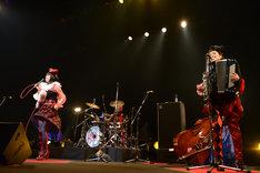 """「チャラン・ポ・ランタンと崩壊バンド ツアー2015 """"Shiwasu de Gowasu""""」東京公演の様子。"""